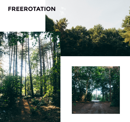 Freerotation-2